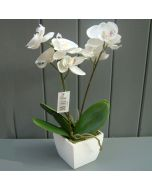 Artificial Potted Cream Orchid Plant
