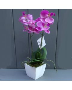 Artificial 33cm Potted Pink Orchid Plant