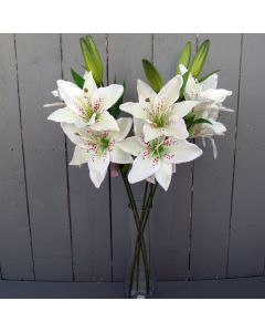 Artificial Ivory Lily Flowers