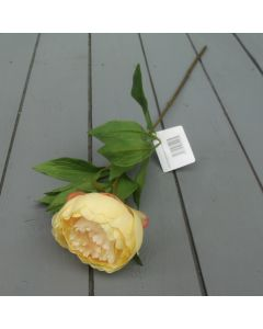 Artificial 59cm Single Apricot Peony