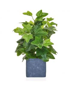 35cm Artificial Ivy in Pot