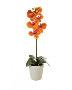 59cm Artificial Orange Orchid in White Pot