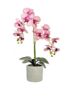 60cm Artificial Freckled Pink Double Orchid Plant