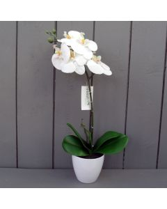 Artificial White Orchid Plant in Pot