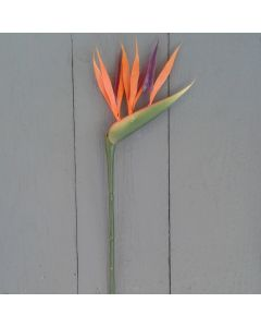 Small 64cm Artificial Bird of Paradise