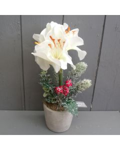 Artificial 30cm Ivory Potted Amaryllis