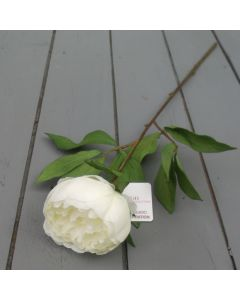 Artificial 59cm Single Cream Peony