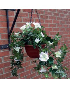 Artificial Ivory Petunia Hanging Basket
