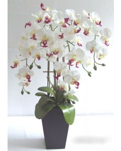 66cm Artificial White / Pink Orchid Plant in Pot