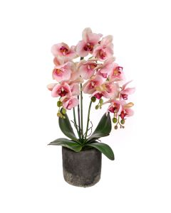 55cm Artificial Real Touch Orchid in Pot