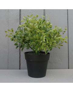 Artificial Potted Oregano