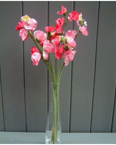 Artificial 42cm Pink Sweet Pea Flowers Bunch
