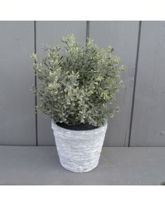 Potted Artificial Thyme