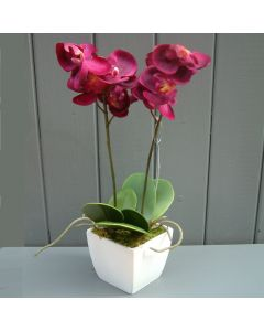 Artificial Potted Fuchsia Orchid Plant