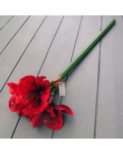 Artificial 68cm Red Amaryllis