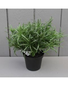 Artificial 19cm Potted Rosemary Plant