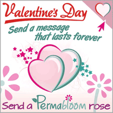 Send a Message That Lasts Forever