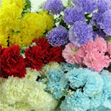Artificial Carnations